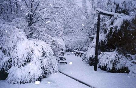 *Sutherland in Winter